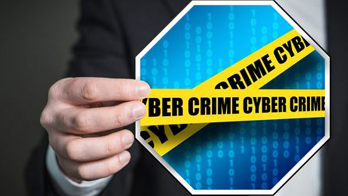 Cyber Fraud and the Growing Threat of Organized Retail Crime